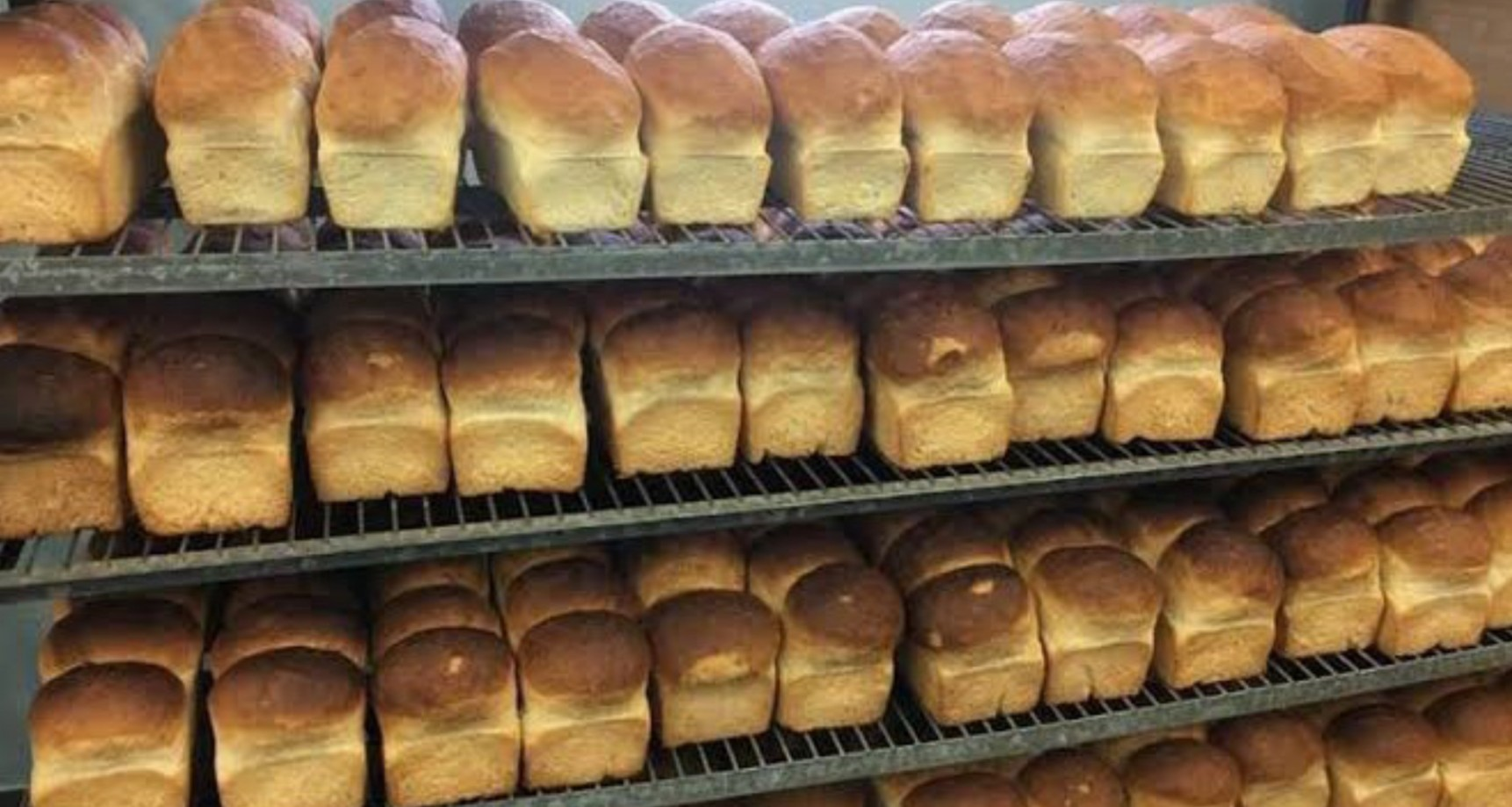 expect 50 increase in prices of bread ambcn tell nigerians