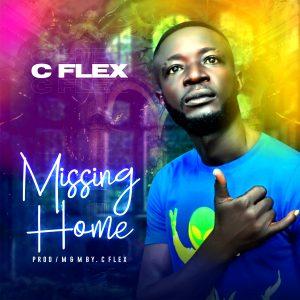 mp3 c flex missing home